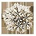 花飾りのポイントモチーフ画像